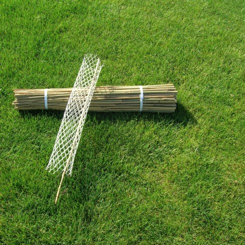 Bamboo Stakes and Rigid Seedling Tubes